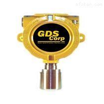 美國GDS Corp氣體監測儀