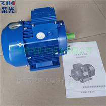 中研紫光電機,MS7114三相異步電機