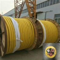 生产NH-JXGH、ZR-JHGX硅橡胶电机引接线