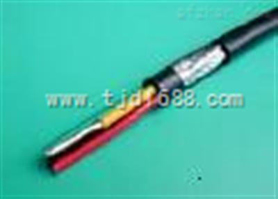 齐全:DJYJPVP22电缆价格