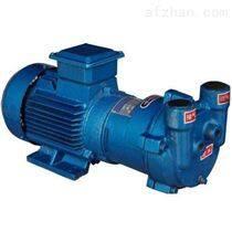 齿轮油泵2BV5110水环式真空泵红旗高温泵厂