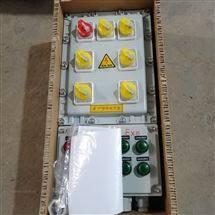防爆配电箱1总6分照明电源箱