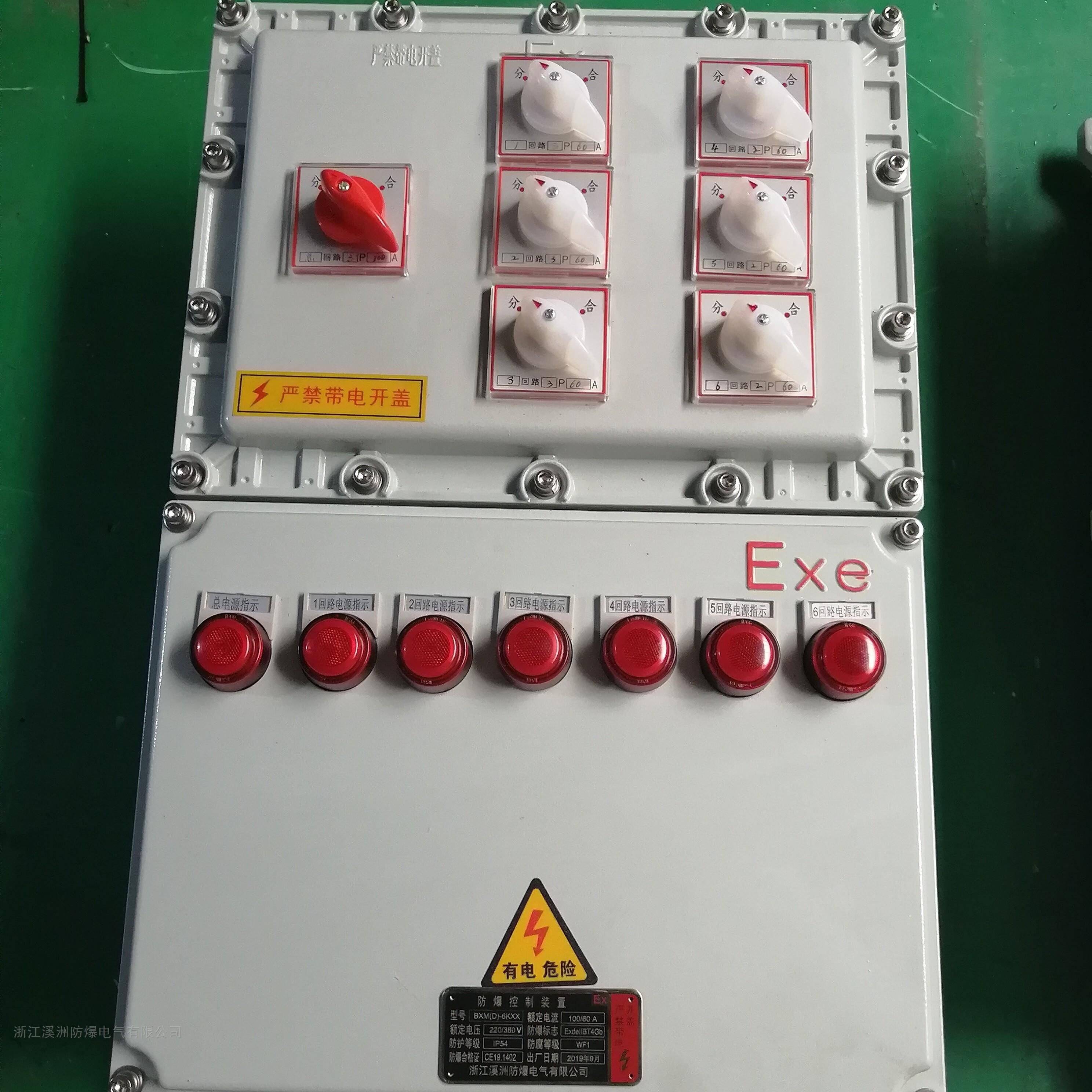 防爆照明动力配电箱1总6分挂壁式