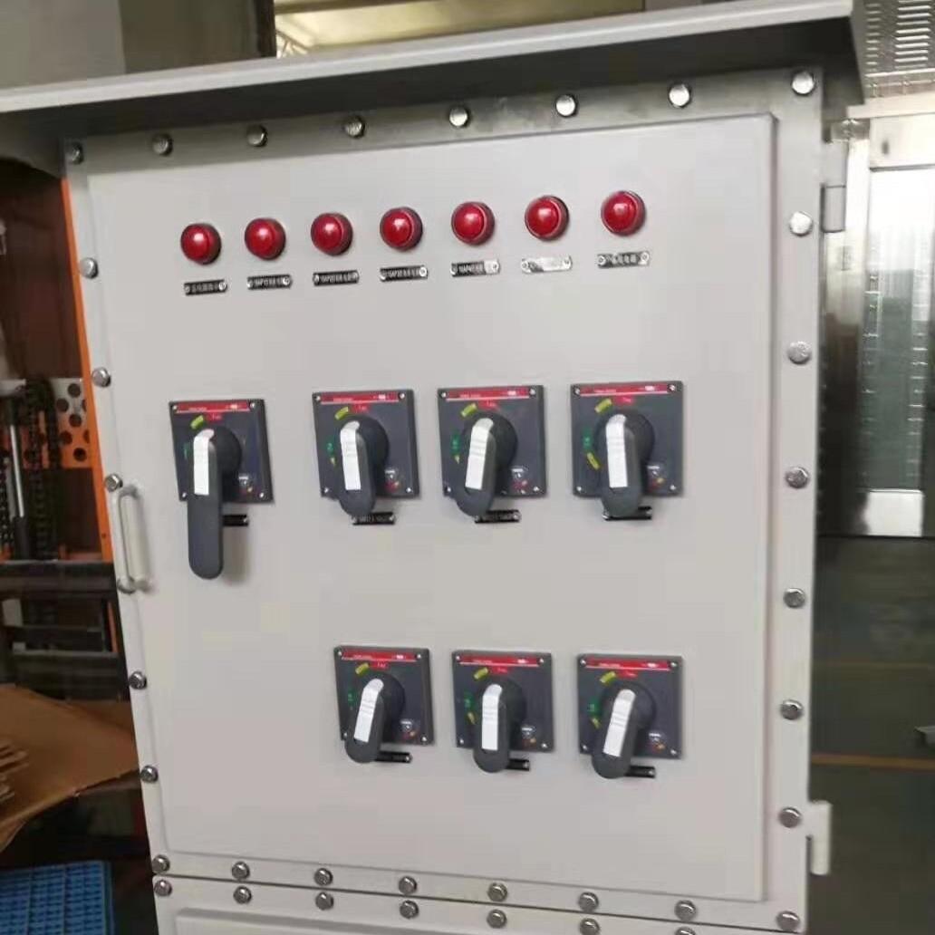 IIB级防爆控制柜带防雨罩