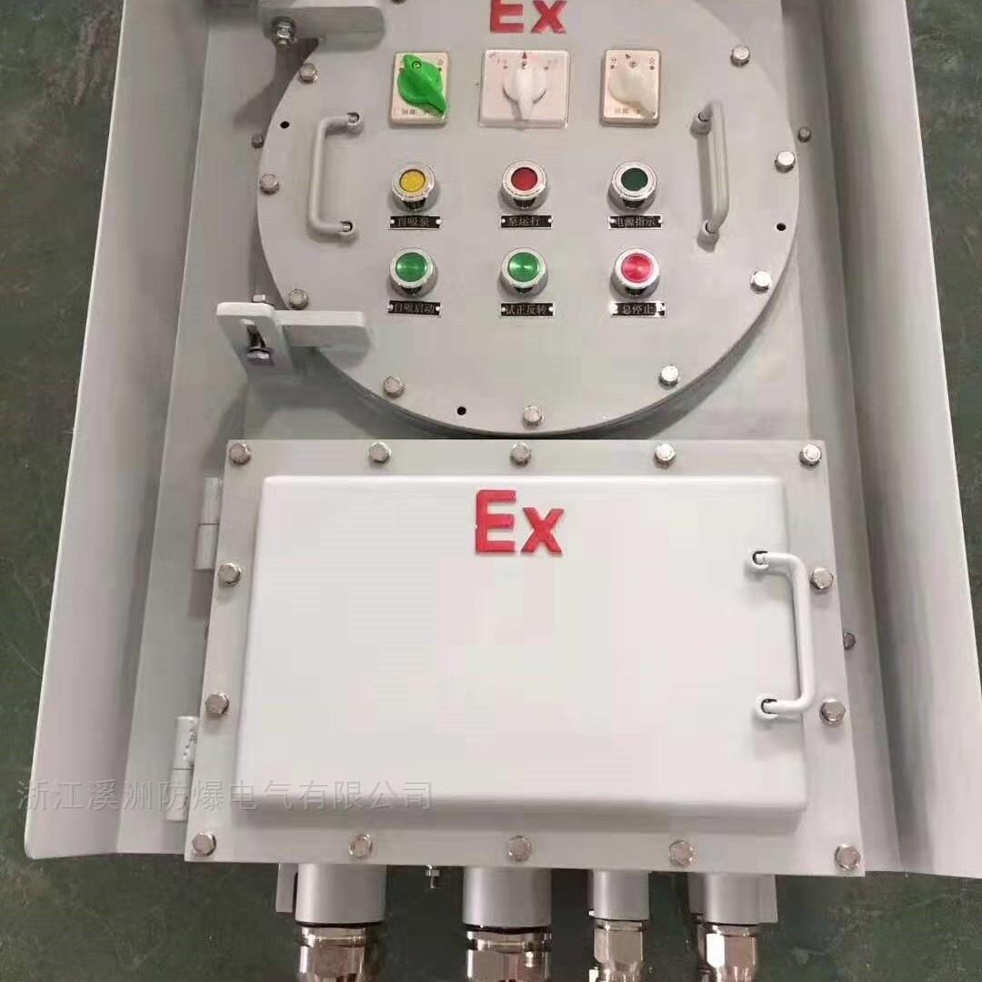 IIC级碳钢配电箱带防雨罩