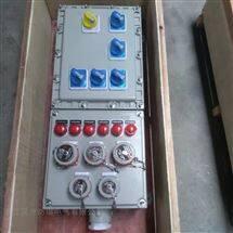 防爆动力检修箱1总5分插座箱