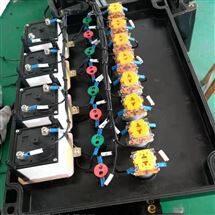 FXM防水防尘防腐控制箱三防箱带仪表