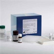 小鼠IgG3亚类单抗纯化试剂盒