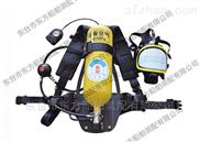 国标自吸式长管面罩呼吸器(DFZXS-I)