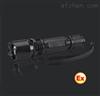 W7300W7300微型防爆电筒、GAD202-J多功能强光巡检电筒灯 华荣、价格、